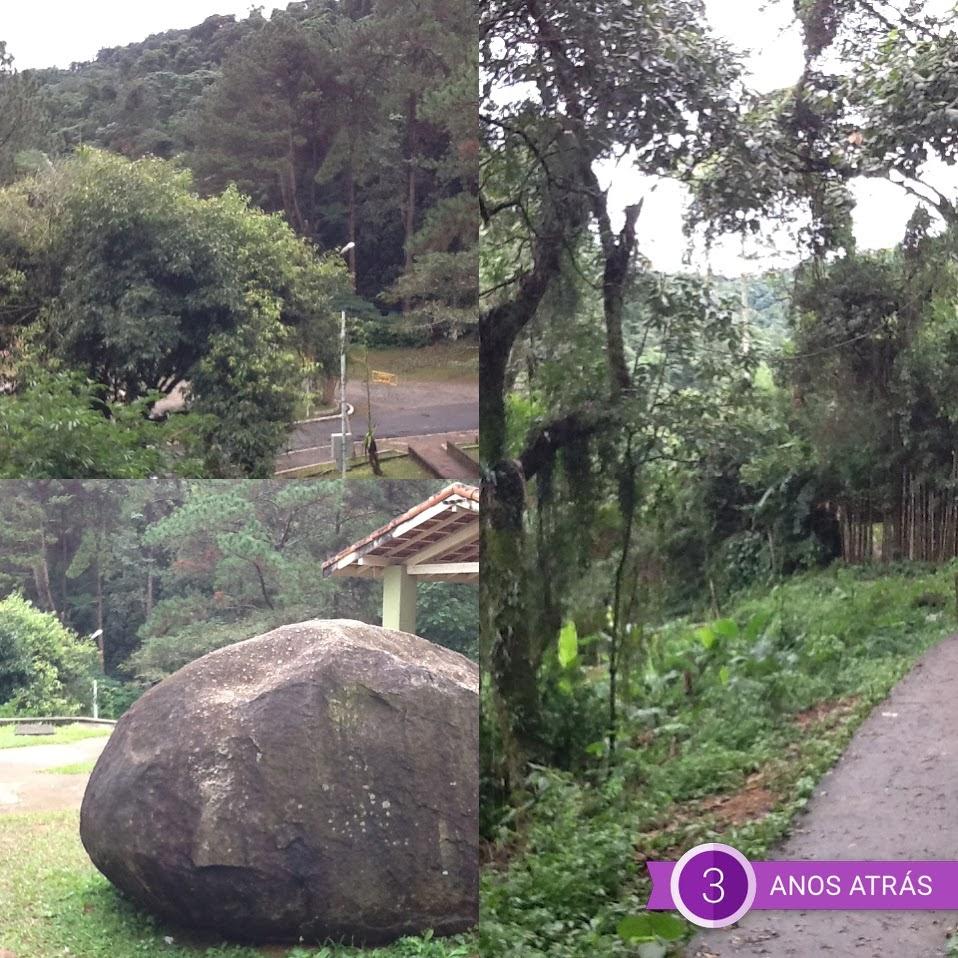Foto: Conceição Aparecida Sanetos, 02/06/13, Rodoanel Norte, clube da Sabesp, zona norte da cidade de São Paulo, Brasil