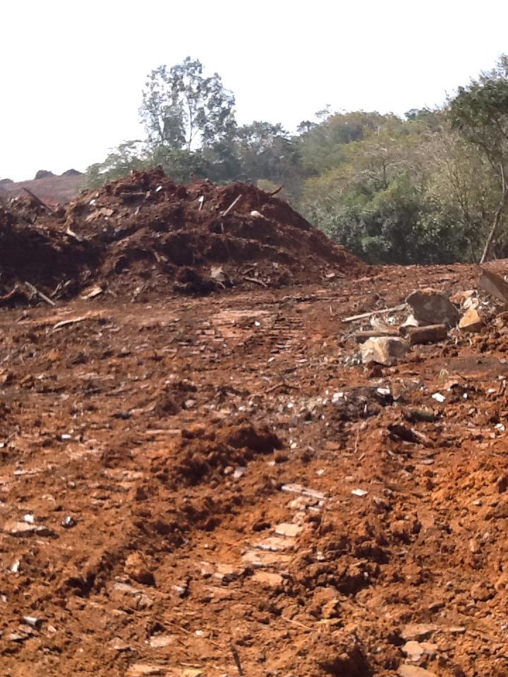 Foto: Conceição Aparecida Santos, Fazenda Santa Maria, 31/07/2014