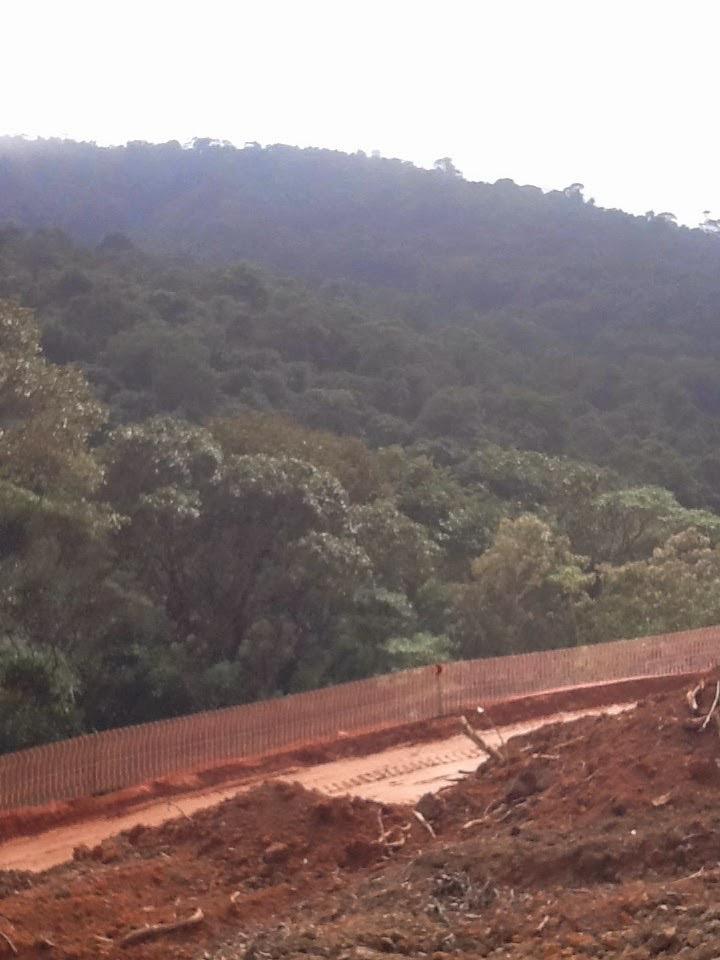 Foto: Conceição Aparecida Santos, Fazenda Santa Maria, 31/07/2014, zona norte de São Paulo, Brasil.